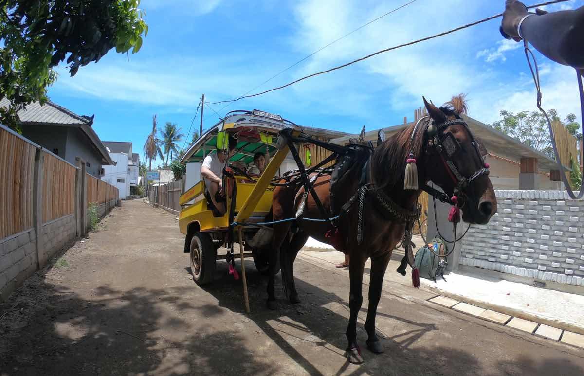 ギリ島のシドモ(馬車)
