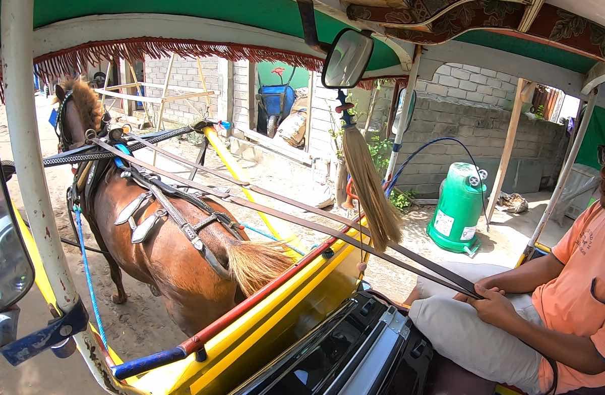 ギリ島のシドモ(馬車)に乗っている様子