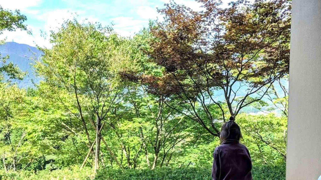 界仙石原のベランダ