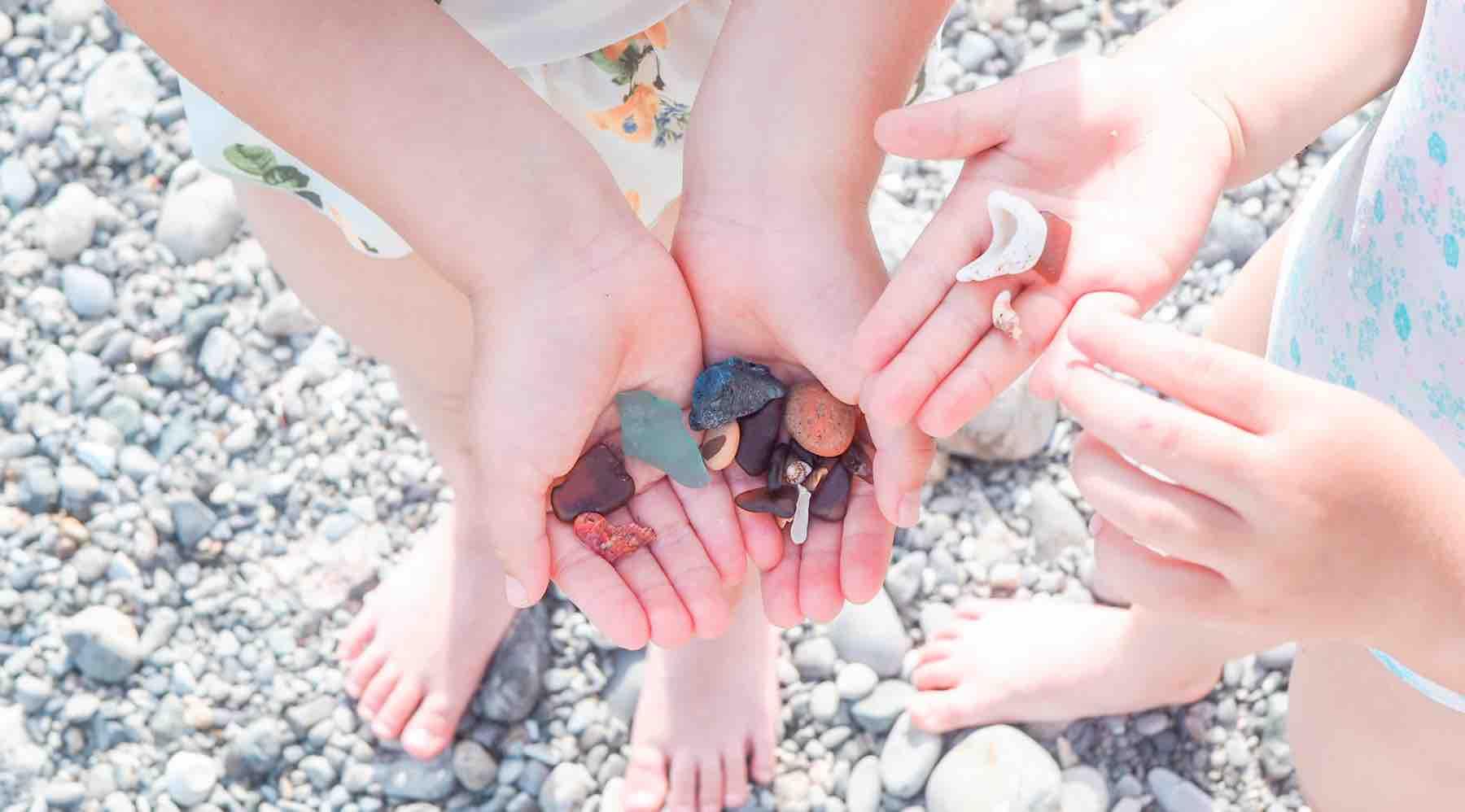 海岸で見つけた貝殻と石